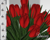 e Red Wedding Tulips