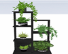 :3 Plant Stand
