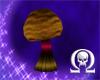 Round Cap Mushroom