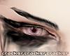 CKR imp brows