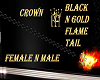 BH/BLK/GLD/CR/FLAME/TAIL