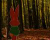 Little Red Rabbit