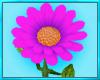 Enchanted Pink Flower