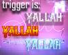 ♚ Yallah Light