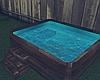 ϟ Asian Hot Tub