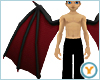 Fld Dragon Wings: BlkRed