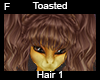 Toasted Hair 1 F