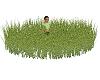 rug grass