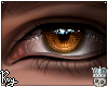 Pious Eyes - Bronze