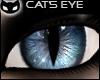 [SIN] Cat's Eye - Blue