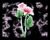 Rose Streamer