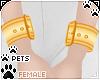 [Pets]Wristcuff   yellow