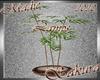 !a Sakura Bamboo Planter