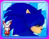 Neo Sonic Hair Quills