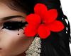 Hibiscus Red (L)