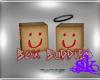 *SK* Box Buddies