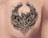 +SE+ Phoenix Tattoo