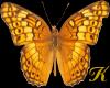 """K""""GOLD BUTTERFLIES"""