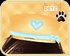 [Pets] Theo | hat v1
