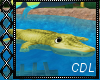 !C* F Alligator Float II