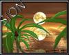 SIO- Island Gold Moon