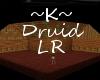 ~K~ Druid LR