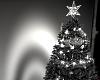 Blk. Christmas Tree 2017