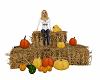 Autumn Haystack