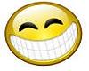 (C29) LAUGH VOICE BOX