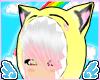 .R. Crayon Sun Kitty