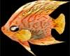 Anim.Under sea fish 3p