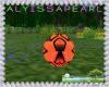 Lake Soccer 3P