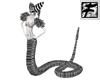 ~F~ BW Snake Body