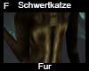 Schwertkatze Fur F