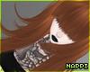 Harajuku - Ginger