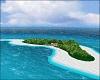 Beach Island w Birds