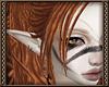 [Ry] Talli Ears + earrin