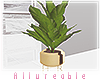 A* Spaces plant
