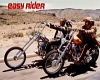 Easy Rider wall Poster