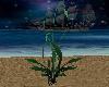[MP] Beach Plant