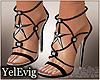 [Y] Stars heels