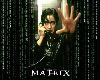 (TY) Matrix Sticker!