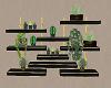 Wall Plant Shelfs