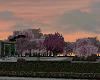 dusk garden romance