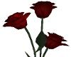 Valentines Dark Red Rose