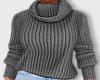 🔥Winter Sweater v2