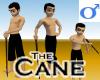 Cane -Mens v1b