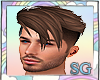 SG Jeff Brown Hair M