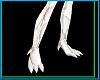 White Dragon Feet