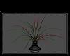 Celine Plant I